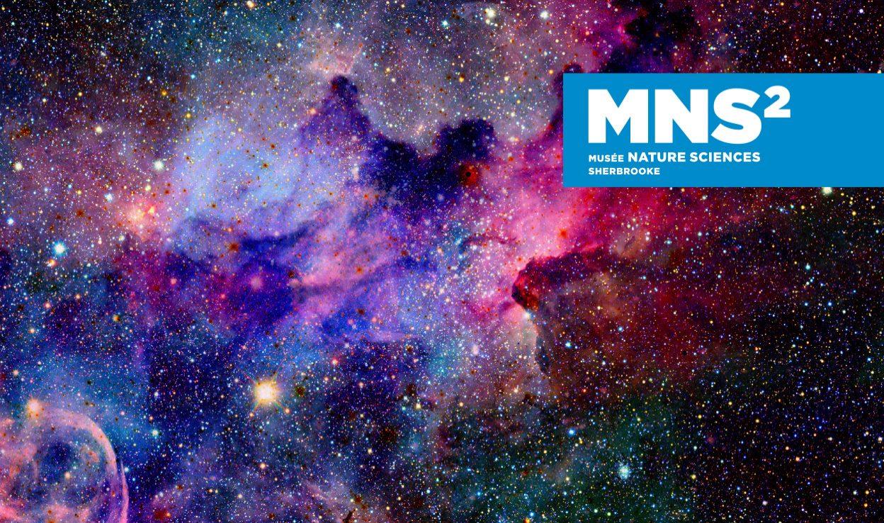 mns2-header
